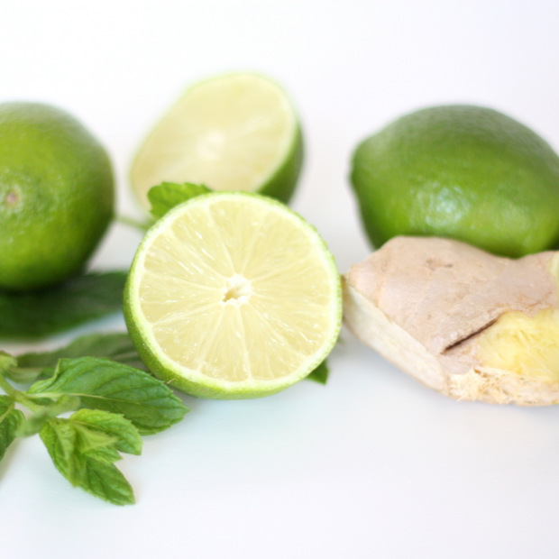 Vietnamesiche Limonade_Limetten-Minz-Ingwer-Limonde